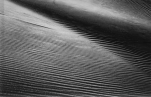TATIANA BOTTON - Sand Shape #2 - photograph - 15 x 22 1/4 in.