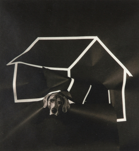 WILLIAM WEGMAN - Dog House - silver gelatin print - 7 1/4 x 6 3/4 in.